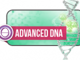 ThetaHealing ® Advanced DNA Seminar in Bremen